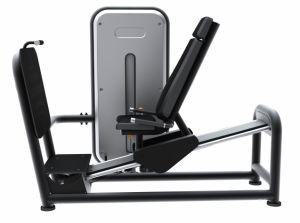 Fitness Leg Press (LH-B09)