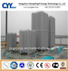 High Pressure Liquid Oxygen Nitrogen Argon Ambient Liquid Gas Vaporizer pictures & photos