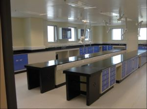 Epoxy Resin Worktop Lab Furniture Manufacture pictures & photos