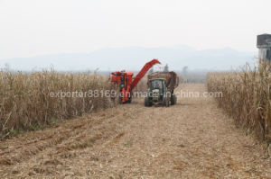 Sugarcane Harvester (4GQ-260) pictures & photos