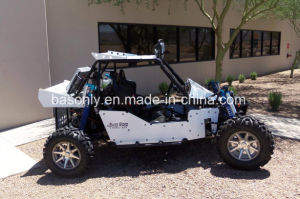 Joyner Sand Viper 1000 Fei Go Kart Dune Buggy pictures & photos