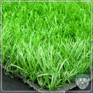 Eco Friendly Artificial Synthetic Grass Turf for Office Decoration pictures & photos