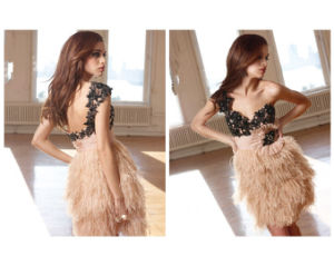 Sweetheart Applique Feather Mini Backless Prom Dresses (xu-101)