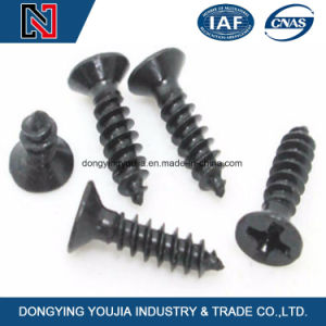 Cross Recess Countersunk Head Self Tapping Screws pictures & photos