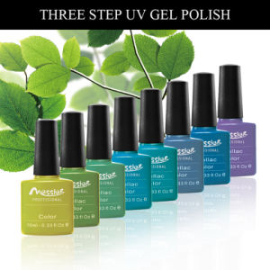 Long Lasting Three Steps 10ml Colorful Bottle Nail  Nail UV Gel Polish