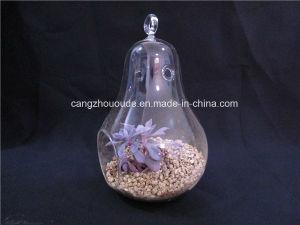 Plant Flowers Glass Flower Vase