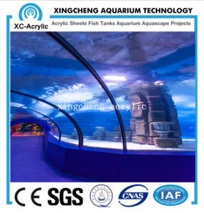 Clear Marine Acrylic Tunnel Oceanarium pictures & photos