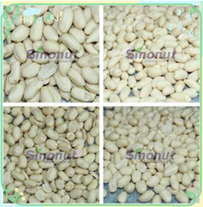 Blanched Peanuts Kernel of 41/51, 51/61, 61/71 pictures & photos