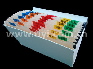 Expanding File Document Organizer with Color Tabs (012012HL02)