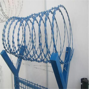 PVC Coated Razor Barbed Wire Mesh Fence pictures & photos