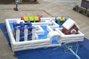 Giant Popular Labyrinth Inflatable Maze for Amusement Park (AQ16188) pictures & photos