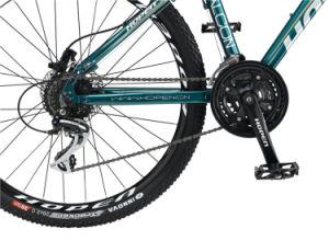 "26"" 24sp, Dark Green New Fashion Mountain Bike pictures & photos"
