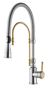 Single Lever Pull out Kitchen Faucet (WT1001CG-KF) pictures & photos