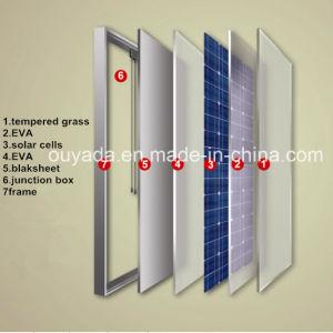 Monocrystalline Solar Panel 150W pictures & photos