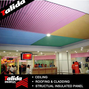 Aluminum Screen Ceiling (TLD-J005)