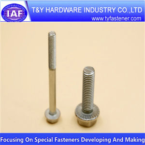 Stainless Steel DIN 6921 Hex Flange Bolt for Fasteners Industry pictures & photos