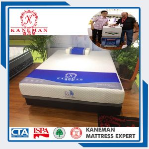 12 Inch Cool Feeling Ice Silk Colour Box Package Mattress pictures & photos