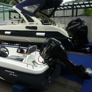 15HP Outboard Engine pictures & photos