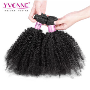Afro Kinky Curly Human Hair Extension Brazilian Hair pictures & photos