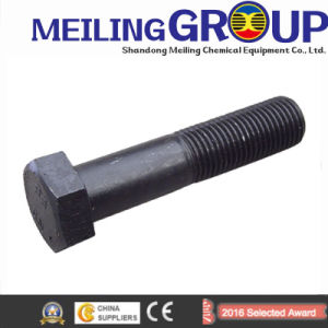 Fastener Hex Bolt / Carriage Bolt / Flange Bolt / T Head Bolt / Guardrail Bolt / U Bolt / Stud Bolt /Anchor Bolt pictures & photos