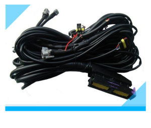 Factory Custom Electric Vehicle Wire Harness with High Quality pictures & photos