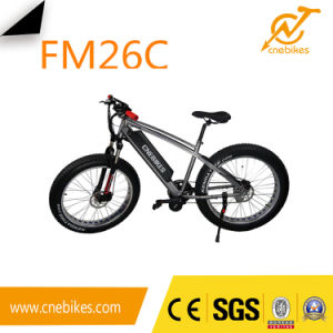 MID Motor Engine Electric Fat Bike with 26X4′′ pictures & photos