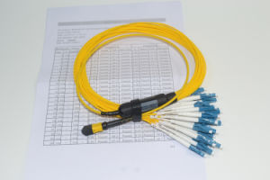 100% 3D Tested with Testing Report MTP / MPO 8 Core, 12core, 24core 40g /100g MPO Cable pictures & photos