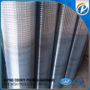 Electro Cage Galvanized Welded Wire Mesh/ Welded Rabbit Cage Wire Mesh pictures & photos