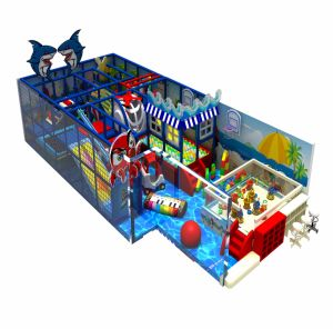 China Professional Manufacturer Kids Indoor Playground for Sale pictures & photos
