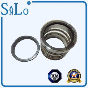 Type R5 Mechanical Seal for The Pump pictures & photos