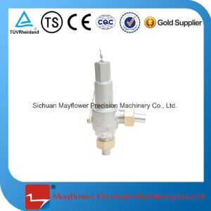 Dn10 Cryogenic Pressure Relief Valve pictures & photos
