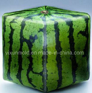 Customized Moulded Plastic Injection Heart Square Watermelon pictures & photos