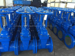 Rising Stem Resilient Seat Gate Valve (Z41X) EPDM Rubber Coated Wedge pictures & photos