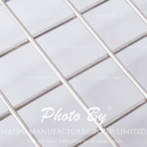 Zinc Plated 1 Inch Galvanized Welded Wire Mesh pictures & photos