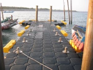 Hmwhdpe Combi-Cube Anti-Slide Modular Floating Pontoon pictures & photos