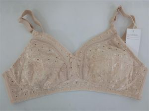 Simple Bra Without Pad (CS663211) pictures & photos