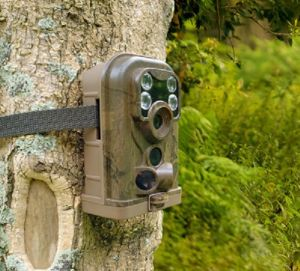 Factory Direct Sell 12MP Hunting Trail Camera Wild Hunting Camera pictures & photos