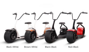 1000W Electric Scooter for Adult pictures & photos