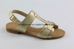 Good Quality Flat Heel Sandal Lady Shoes for Summer pictures & photos