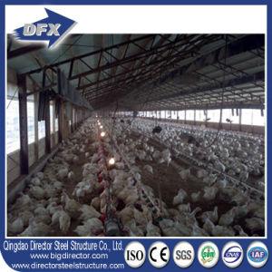 Steel Structure Poultry Farm Installation Low Cost pictures & photos