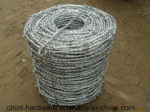 China Factory Barbed Wire/Coil Barbed Wire for Fencing pictures & photos