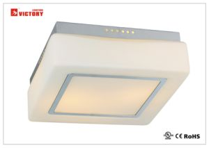 Indoor Lighting Ceiling Surface Mount LED Modern Light Wall Light pictures & photos