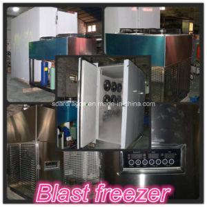 Split Type Stainless Steel Blast Freezer pictures & photos