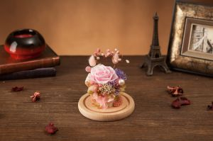 Preserved 100% Natural Real Rose Flower in Glass for Valentine Gift pictures & photos