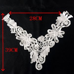 High Quality Lace Collar for Fashionable Clothing pictures & photos