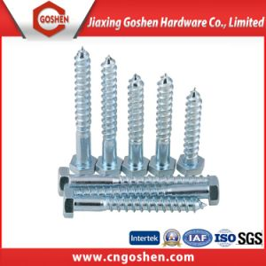 Stainless Steel DIN571 Wood Screw/Hex Lag Screw/Coach Screw pictures & photos