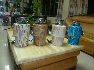 The Kitchen Food Waste Disposer/ Garbage Disposer pictures & photos