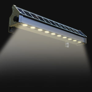 Unique Design Solar Wall Washer Light LED Advertising Light RGB Decorating Light pictures & photos