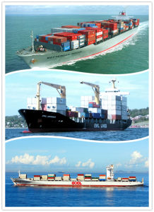 Consolidate Shipping Service From China to Montserrat pictures & photos