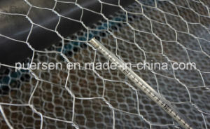 Hexagonal Wire Mesh From 14 Gauge pictures & photos